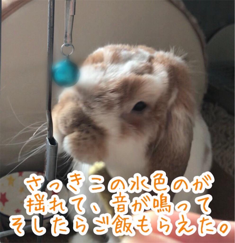 f:id:yurina12:20191227100445j:image