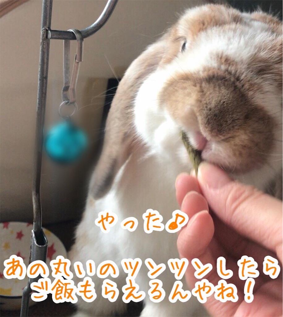 f:id:yurina12:20191227100448j:image
