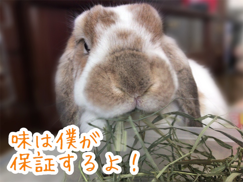 f:id:yurina12:20191228003321j:image