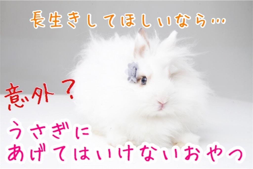 f:id:yurina12:20191229091352j:image