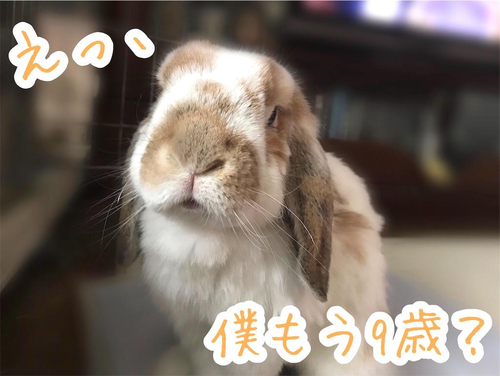 f:id:yurina12:20200108225327j:image