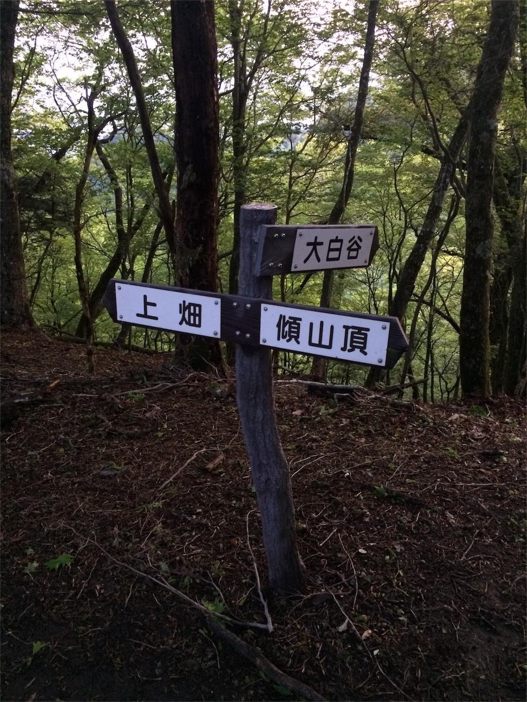 f:id:yurius_r:20160616123216j:image