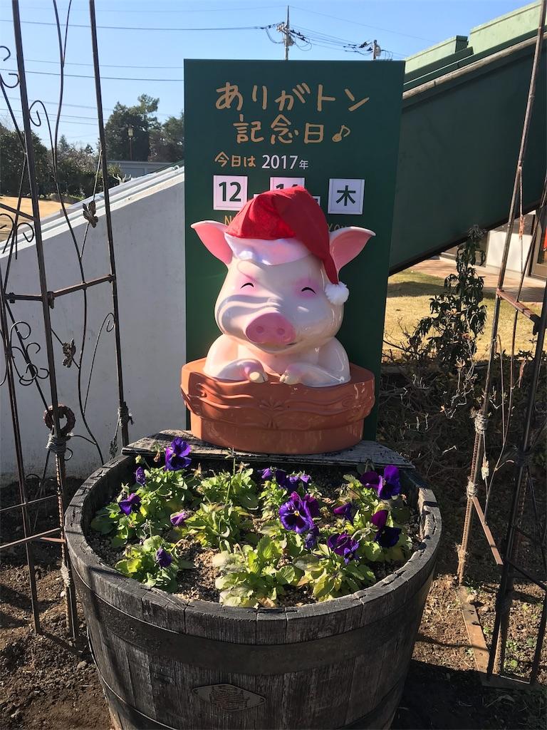 f:id:yurucat:20171215204240j:image