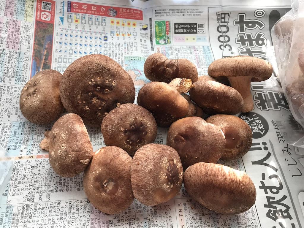 f:id:yurucat:20180110122804j:image