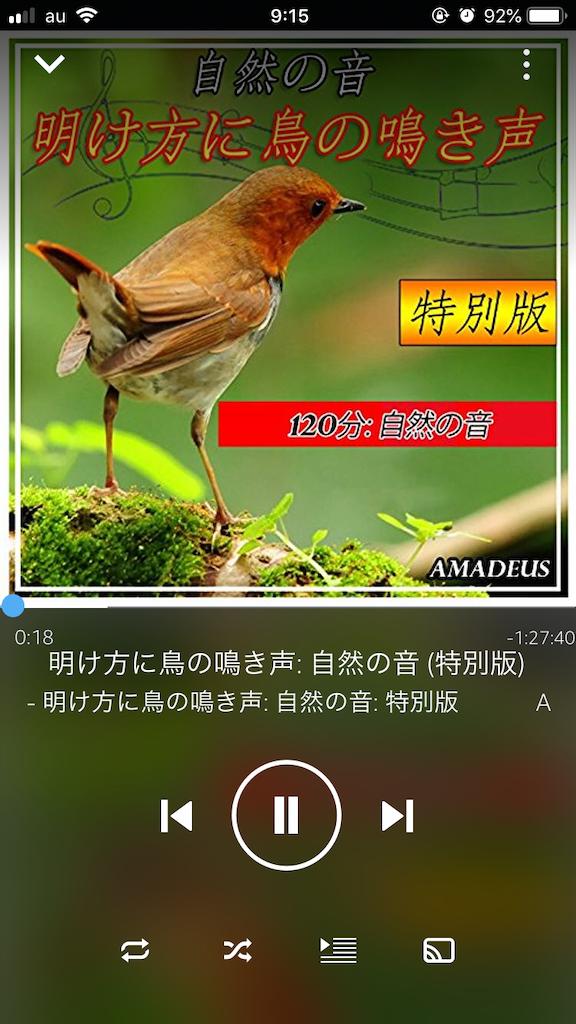 f:id:yurucat:20190412165407p:image