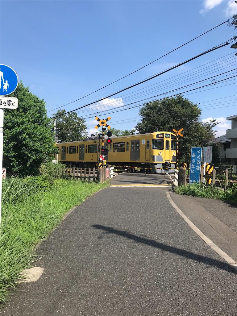 f:id:yurucat:20200806063818j:image