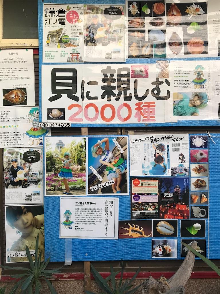 f:id:yurucat:20201109102843j:image