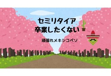 f:id:yuruhirolife:20200330190612j:plain
