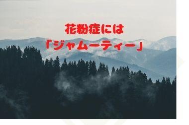 f:id:yuruhirolife:20210301141057j:plain