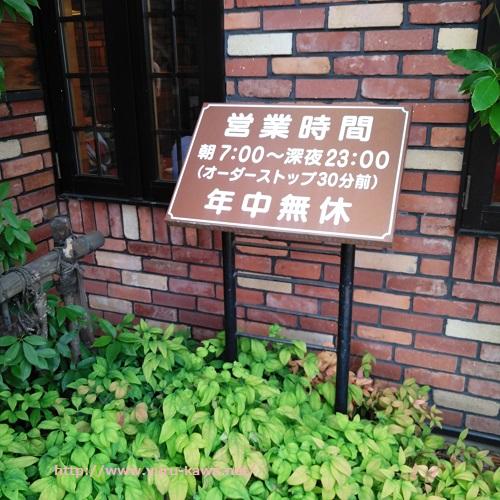 f:id:yurukawa:20190531122551j:plain