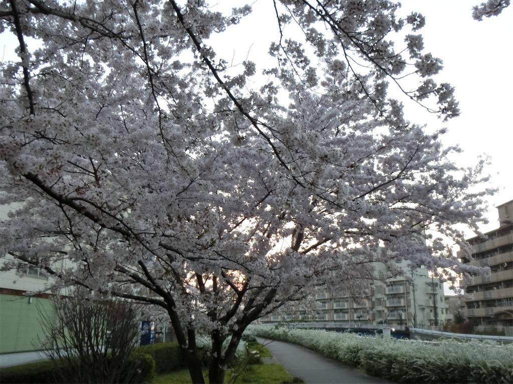 f:id:yurukeirider:20170409200820j:image