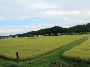 f:id:yurukoo:20180928161952p:plain