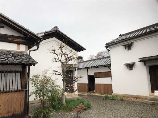 f:id:yurulife50:20190331233638j:image