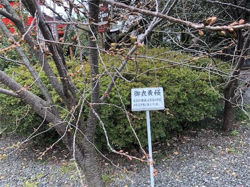 f:id:yurulife50:20190402182705j:image