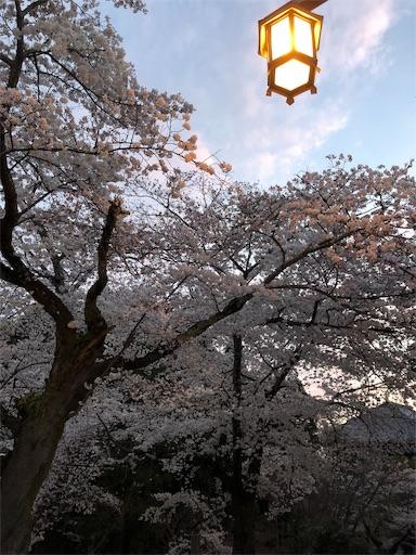 f:id:yurulife50:20190410191918j:image