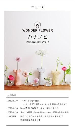 f:id:yurulife50:20200617202101j:image