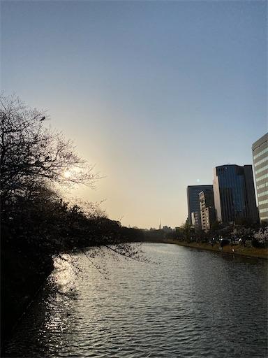 f:id:yurulife50:20210318235923j:image