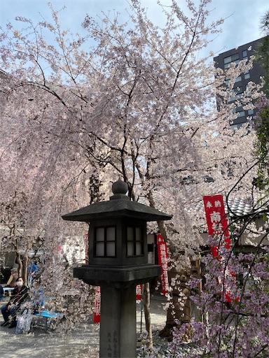 f:id:yurulife50:20210407083713j:image