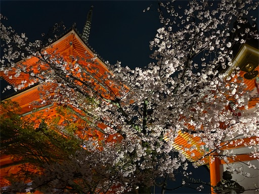 f:id:yurulife50:20210408190718j:image