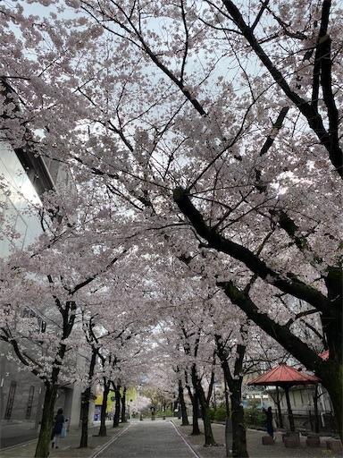 f:id:yurulife50:20210410111152j:image