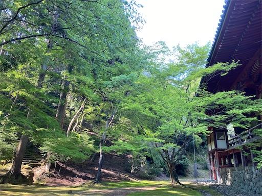 f:id:yurulife50:20210620200751j:image