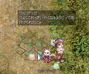 f:id:yurulucky:20200411220013p:plain
