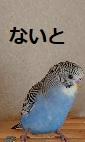 f:id:yurumamatan:20190214174454j:plain
