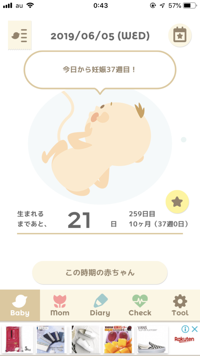 f:id:yurumani:20190607023825p:plain