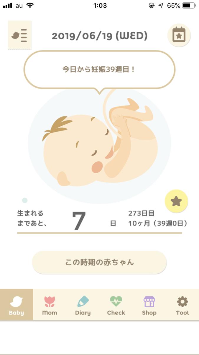f:id:yurumani:20190620001025p:plain