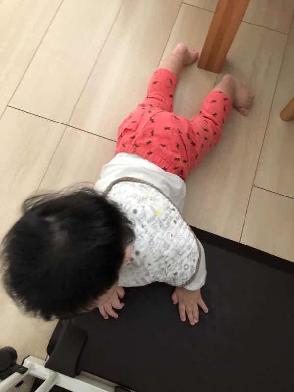 f:id:yurumani:20200430124501j:plain