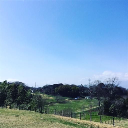 f:id:yurumaruhikiyose:20180311175937j:image
