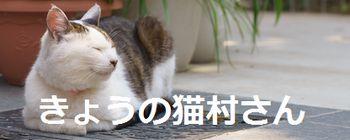 f:id:yururimaaruku:20160530203618j:plain
