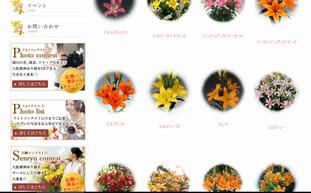 f:id:yururimaaruku:20160608203826p:plain