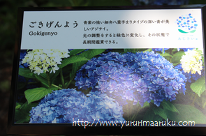 f:id:yururimaaruku:20160619111541p:plain