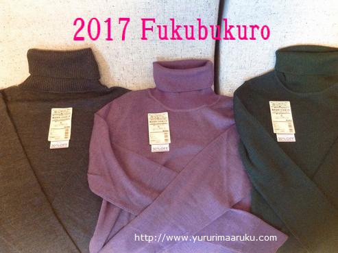 f:id:yururimaaruku:20170104162201p:plain