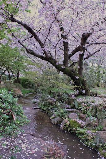 f:id:yururimaaruku:20170412080421j:image