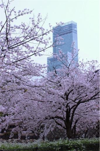 f:id:yururimaaruku:20170412080542j:image