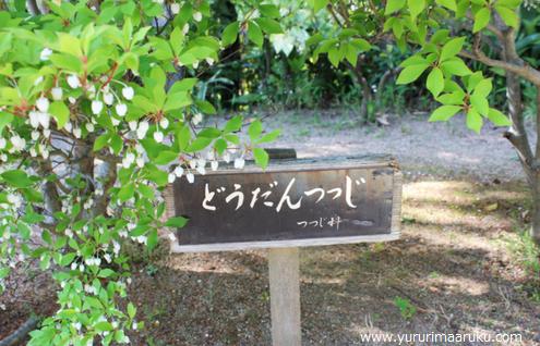 f:id:yururimaaruku:20170503080848p:plain