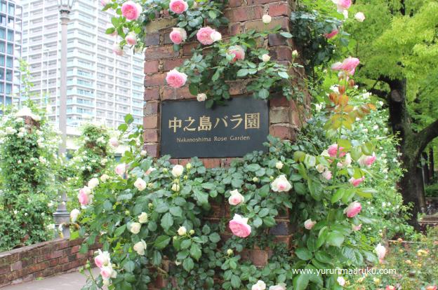 f:id:yururimaaruku:20170517210253p:plain