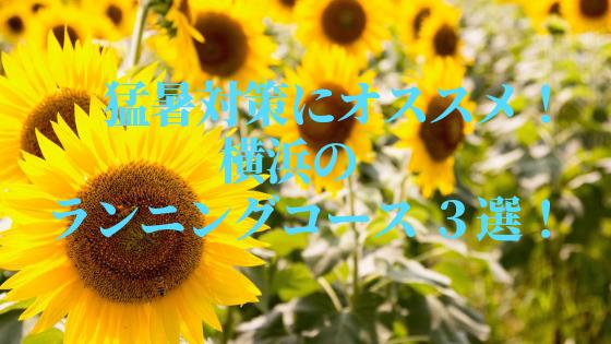 f:id:yururirun:20190817002228p:plain