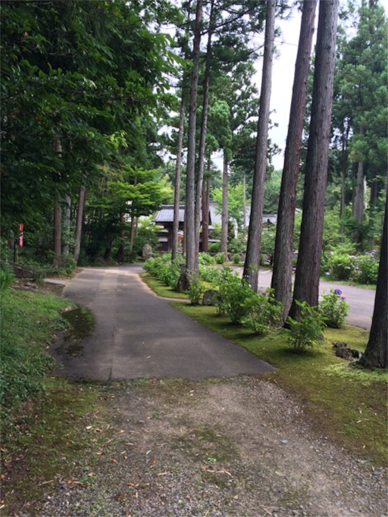 f:id:yururiururi:20160703001556j:image