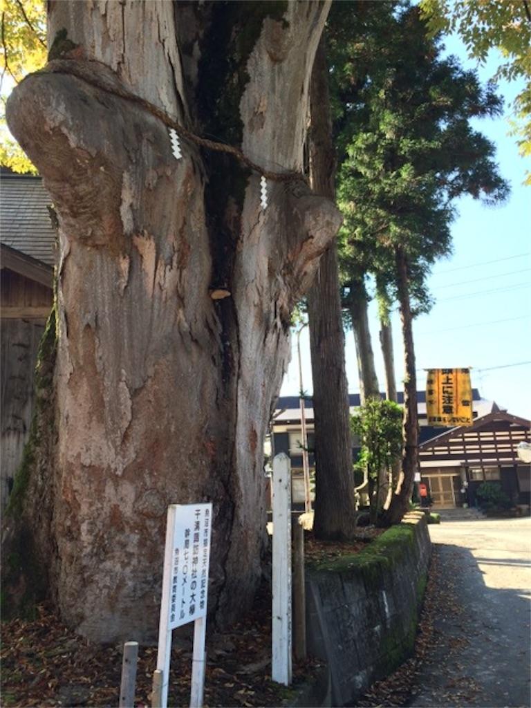 f:id:yururiururi:20161108201525j:image