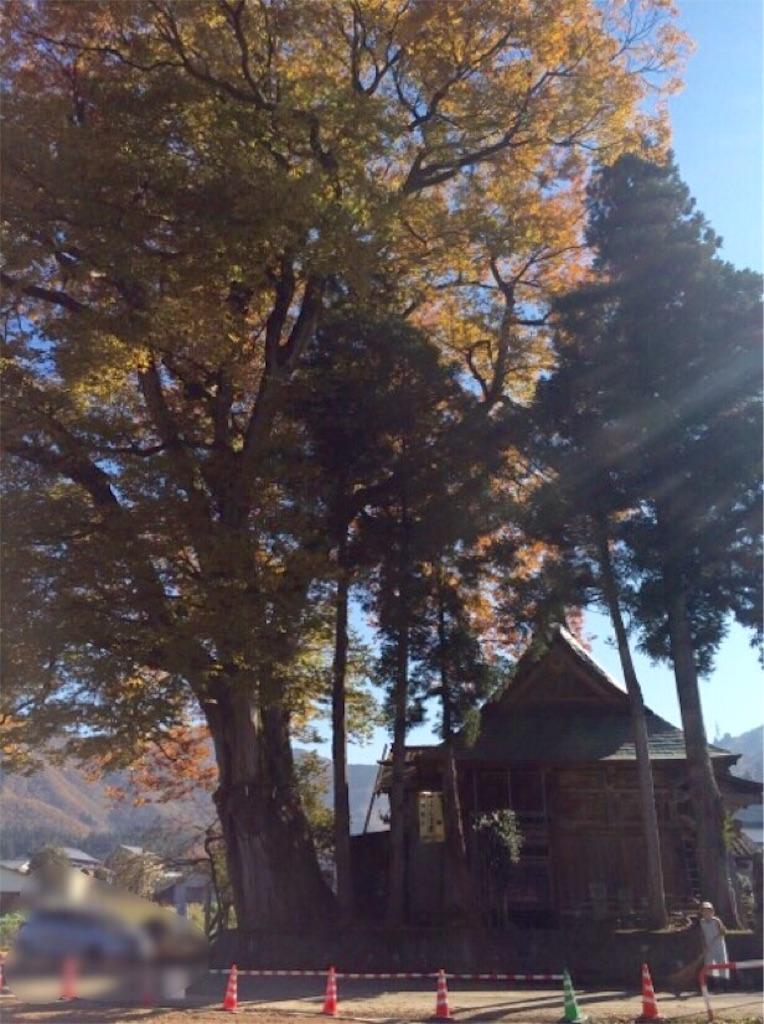 f:id:yururiururi:20161108201926j:image
