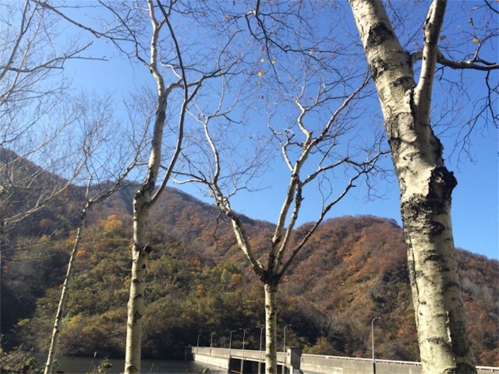 f:id:yururiururi:20161115193308j:image