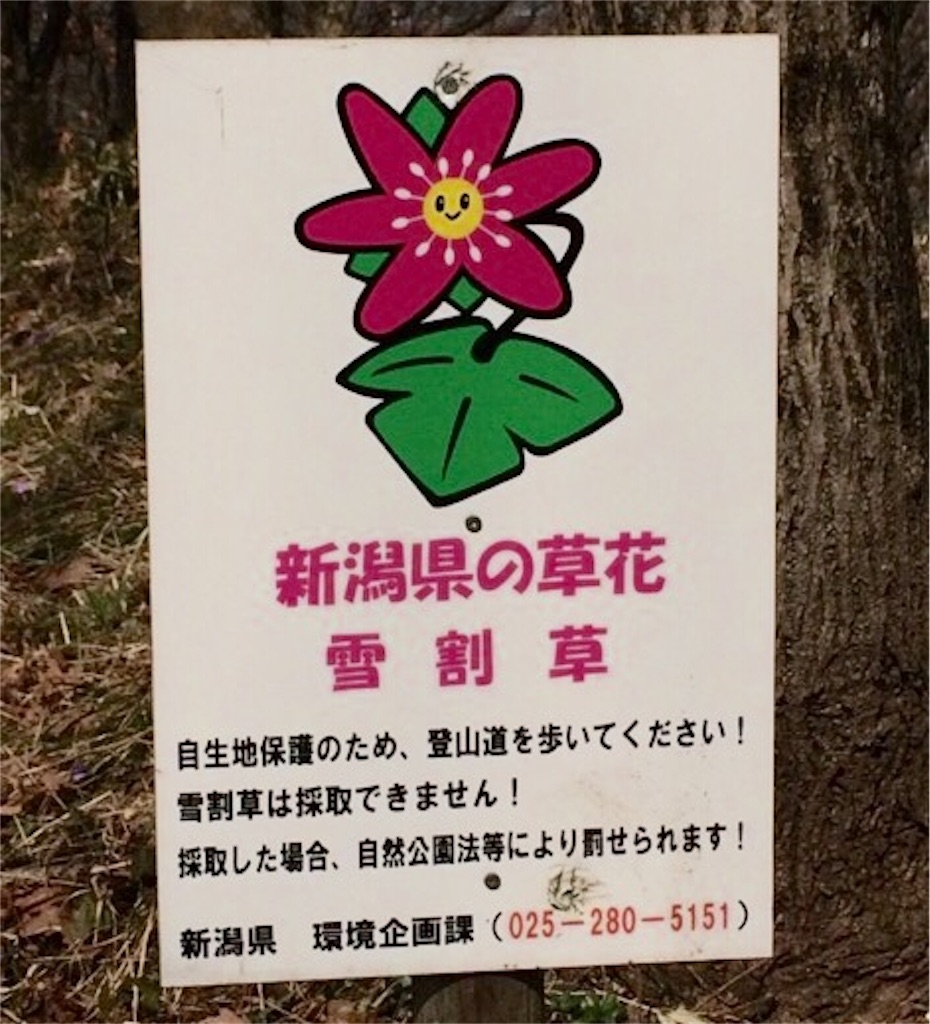 f:id:yururiururi:20170326111000j:image