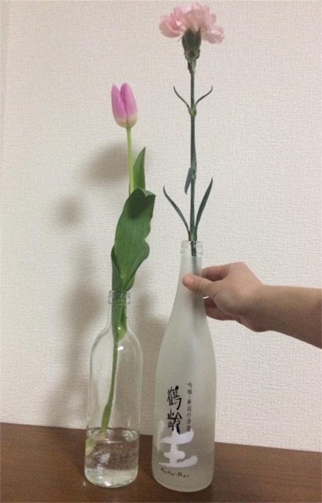 f:id:yururiururi:20170331084249j:image