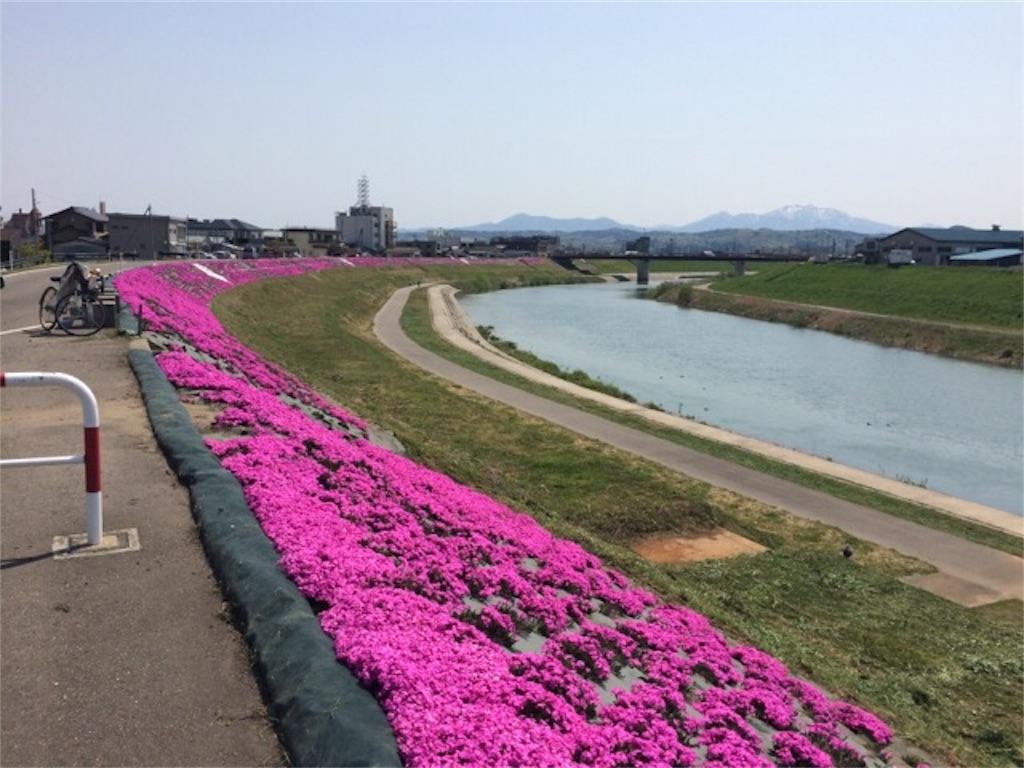 f:id:yururiururi:20170502103508j:image