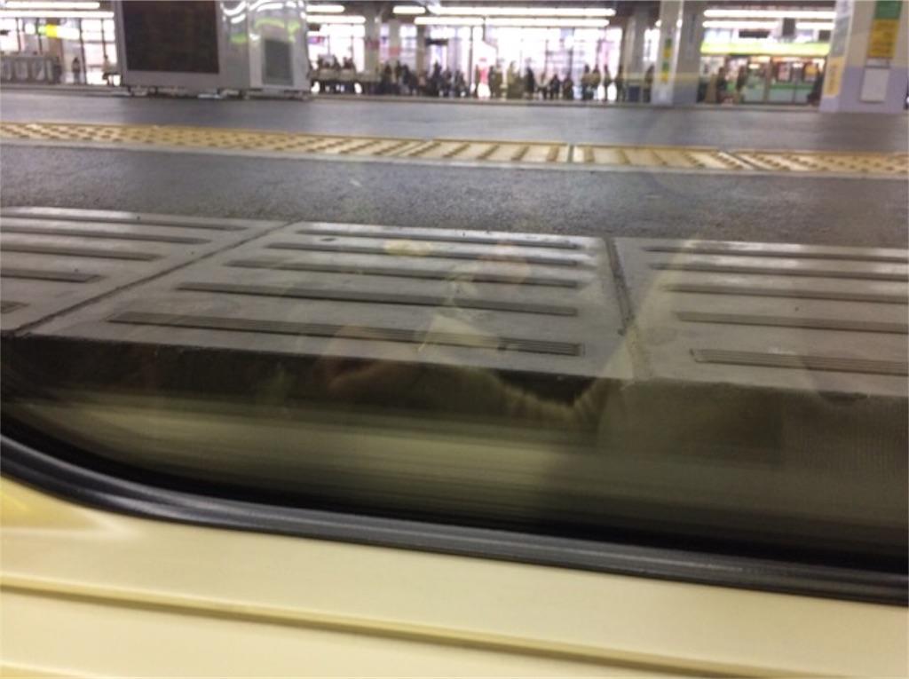 f:id:yururiururi:20171123214545j:image