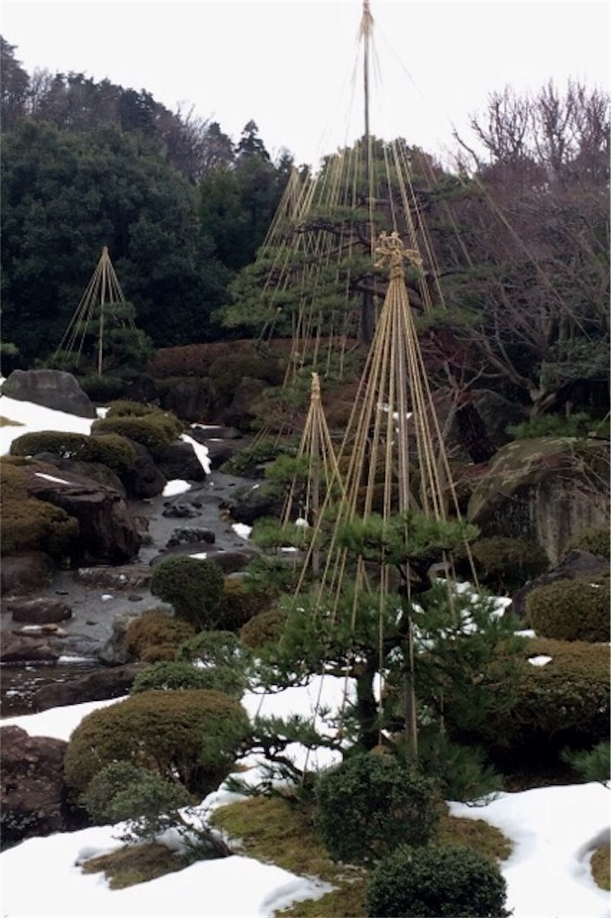 f:id:yururiururi:20180221225645j:image