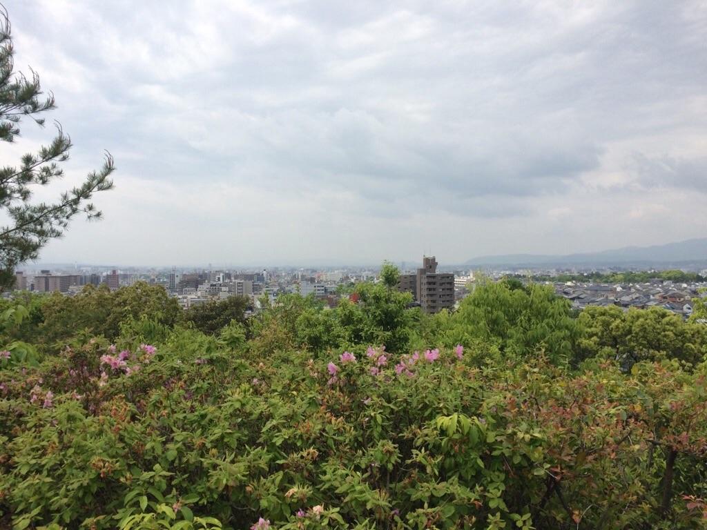 f:id:yururiururi:20180531201611j:image